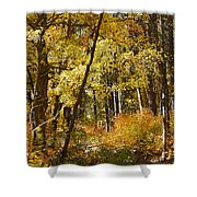 The Forest Beckons Shower Curtain