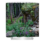 The Forest Trail Shower Curtain