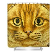 The French Orange Cat Shower Curtain