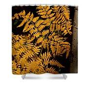 The Golden Fern Shower Curtain