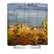 The Golden Glow II Shower Curtain