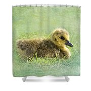 The Gosling Shower Curtain