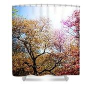 The Grandest Of Dreams - Cherry Blossoms - Brooklyn Botanic Garden Shower Curtain