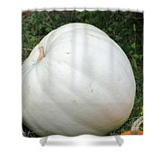 The Great White Pumpkin Shower Curtain