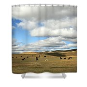 The Great Wide Open Shower Curtain