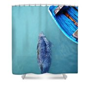 The Grey Seal Shower Curtain