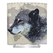The Grey Shower Curtain