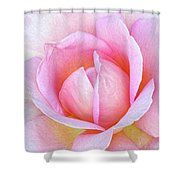 The Heart Of A Rose Shower Curtain