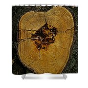 The Heart Of A Tree Shower Curtain