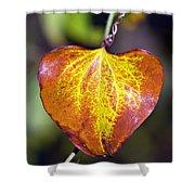 The Heart Of Autumn Shower Curtain