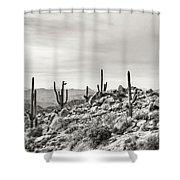 The High Desert  Shower Curtain