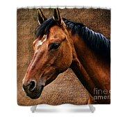 The Horse Portrait Shower Curtain