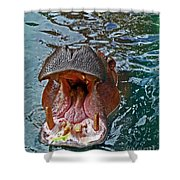 The Hungry Hippo Shower Curtain