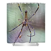 The Hunter And It's Prey Shower Curtain