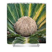 The Inside Of A Fern With The Large Flower In The Middle Shower Curtain