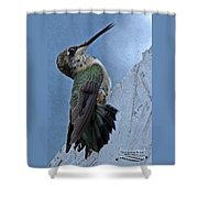 The Invisible Barrier 2 Shower Curtain