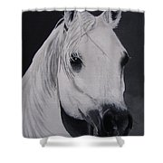 The Ivory Queen Shower Curtain