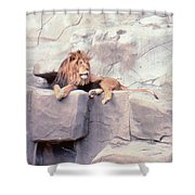 The King At Rest Shower Curtain