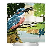 The Kingfisher Shower Curtain
