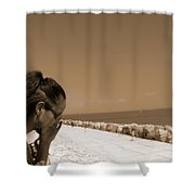 The Lady And The Sea Shower Curtain