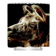 The Legendary Llama  Shower Curtain