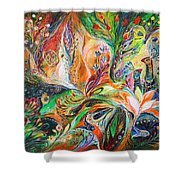 The Light And Wind Shower Curtain