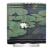 The Lily Bloom Shower Curtain