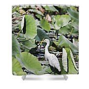 The Lily Float Shower Curtain