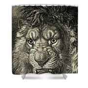 The Lion, King Of Beasts.  From El Shower Curtain