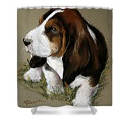 The Little Basset Shower Curtain by Mary Sparrow