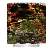 The Long Path Home Shower Curtain