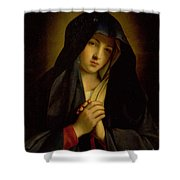 The Madonna In Sorrow Shower Curtain