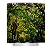 The Mall In Fall Shower Curtain