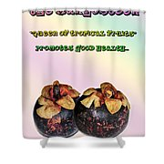 The Mangosteen - Queen Of Tropical Fruits Shower Curtain