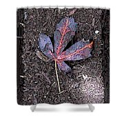 The Maple 5 Shower Curtain