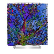 The Maple Tree Shower Curtain