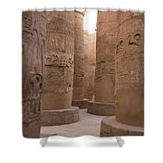 The Massive Columns In The Hypostyle Shower Curtain