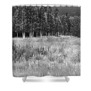 The Meadow Black And White Shower Curtain
