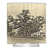 The Mighty One Sepia Shower Curtain