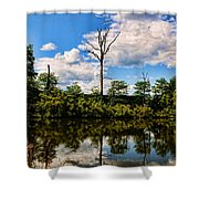 The Naked Tree Shower Curtain
