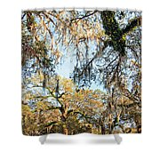 The Oaks Of City Park Shower Curtain