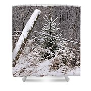 The Old Fence - Snowy Evergreen Shower Curtain