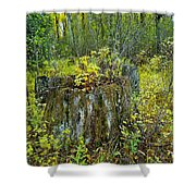 The Ongoing Struggle  Shower Curtain