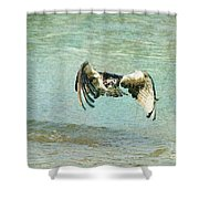 The Osprey Glare Shower Curtain