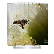 The Overloaded Bee Shower Curtain