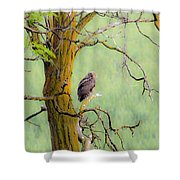 The Owls Overlook Shower Curtain