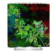 The Painted Arbor Shower Curtain