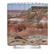 The Painted Desert  8013 Shower Curtain