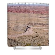 The Painted Desert  8042 Shower Curtain