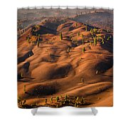 The Painted Dunes Shower Curtain